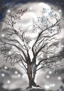 drzewoB2ok